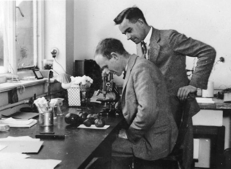 lawrence_ogilvie_26_brian_mulligan_long_ashton_research_station_1930